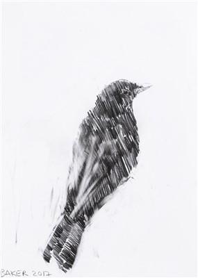 Lot 10-Charming Baker (British b.1964), 'Bird Drawing', 2017