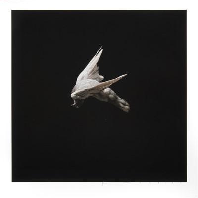 Lot 67 - Jeremy Geddes (New Zealand b.1974), 'Misere/Miserere Print Set One', 2013
