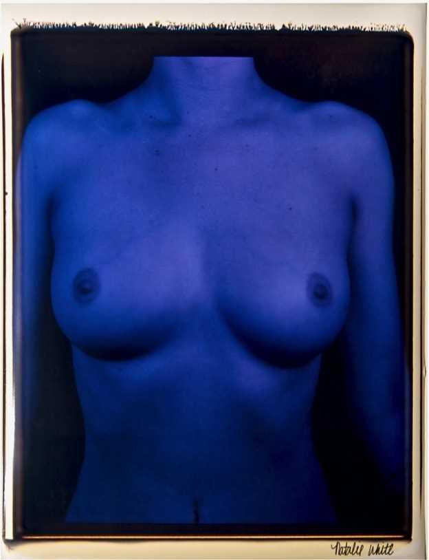 Lot 16-Natalie White (American 1988-), 'Blue Collar', 2013