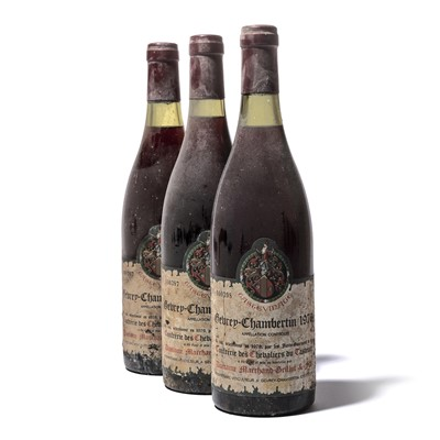 Lot 147-11 bottles 1976 Gevrey-Chambertin