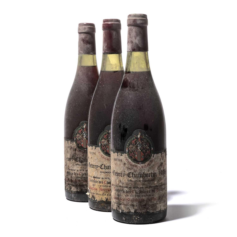 Lot 71 - 11 bottles 1976 Gevrey-Chambertin