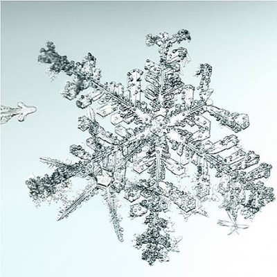 Lot 41 - Doug & Mike Starn (American 1961-), Untitled (Snowflake), 2006